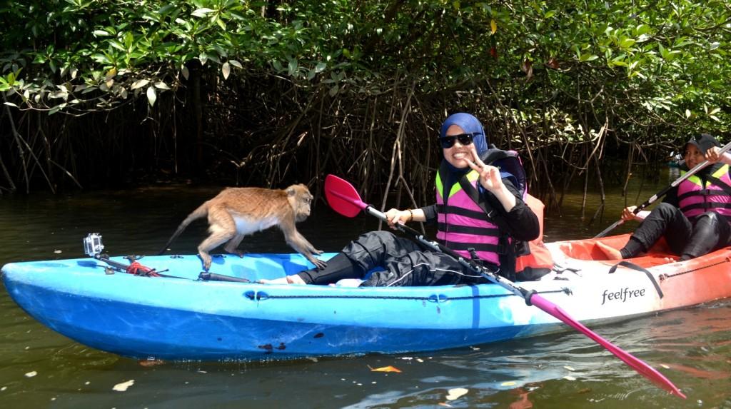 Monkey kayak